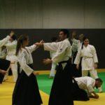 stage international aikido 11