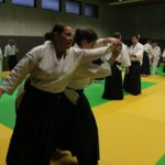 stage international aikido 2