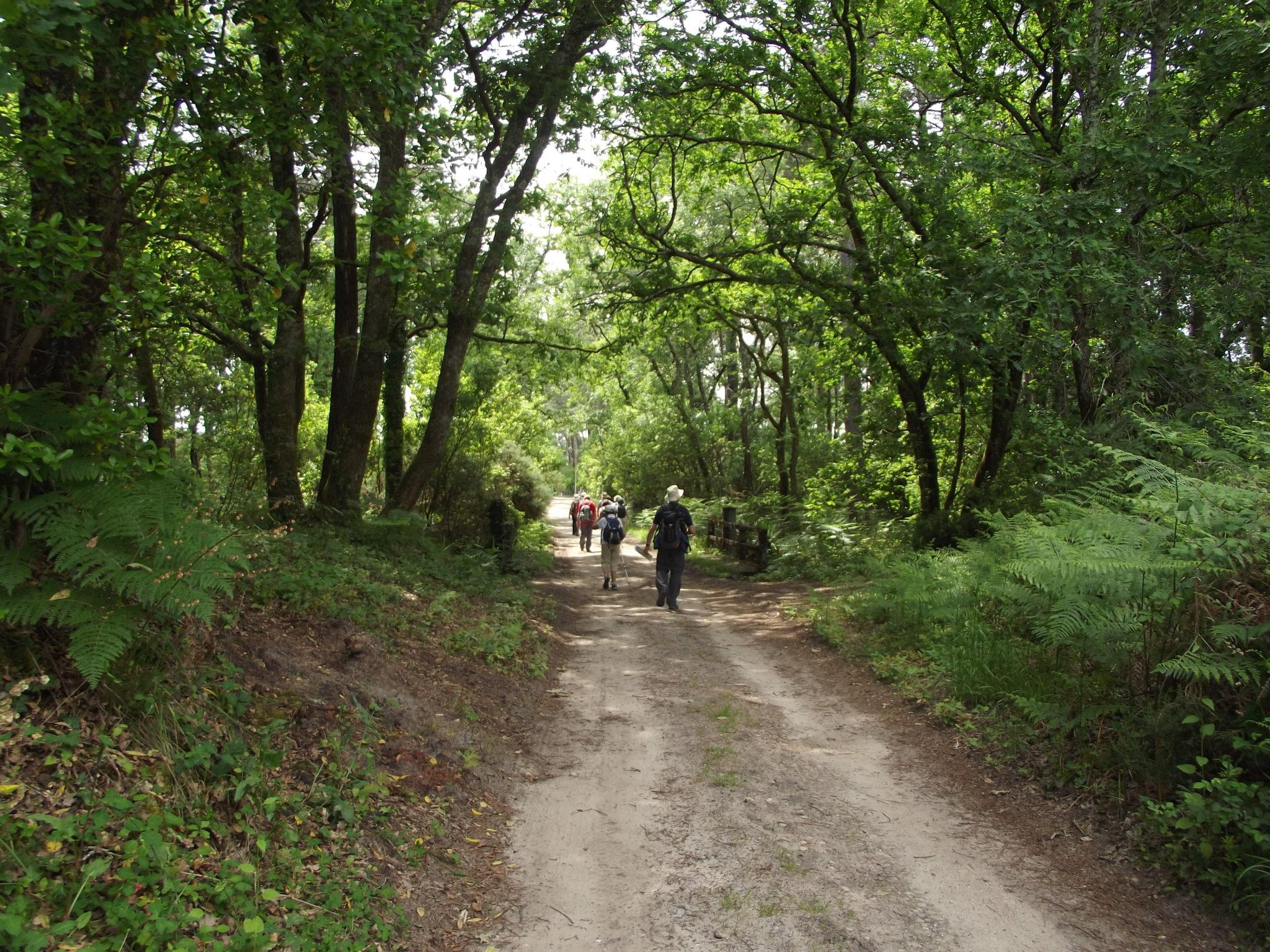 boucles pian médoc trail